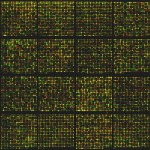 Microarrays are an important way to screen for potential drug candidates and other chemicals