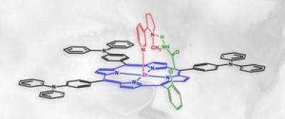 A new polymer trap captures nicotine (shown in red).