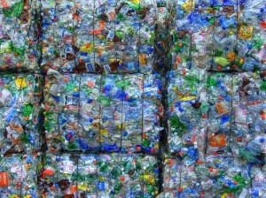 PET Recycling on the Rise