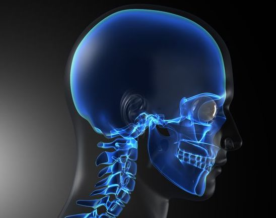 The 3D-printed skull implanted in the Netherlands is just one of the increasingly complex transplant parts created with 3D printing.